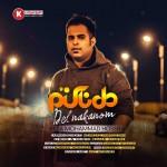رضا محمد حسینی دانلود آهنگ جدید و بسیار زیبا و شنیدنی بنام دل ناکنم
