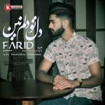 فرید محمدی آهنگ جدید بنام دل تو دلم نین