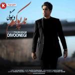 ناصر پورکرم  دانلود آهنگ جدید و فوق العاده بسیار زیبا و شنیدنی بنام دیونگی