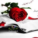رضا سالکه و امین ارچنگی – گل پر پر