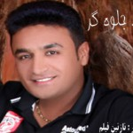 حامد جلوه گر – اجرای زنده