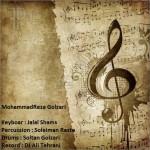 محمدرضا گلزاری – اجرای زنده حفله جدید