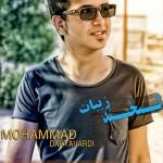 محمد دریاوردی – لبخند زیبات