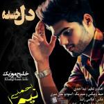 نیما احمدی – دل خسته