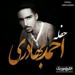 احمد بهادری و ثارالله نوایی – حفله جدید ۲۰۱۷
