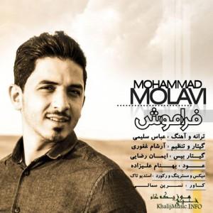 محمد مولوی – فراموش