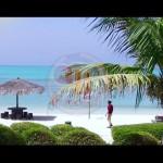 علی اسماعیلی موزیک ویدئوی جدید و بسیار زیبا و دیدنی بنام گل ناز