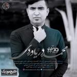 محمد دریاوردی – بیست و نهم