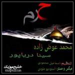 سینا دریاپور و محمد عوض زاده – حرم