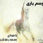 محمدرضا کریمی – موسوم یاری