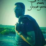 محسن فیروزیان – حفله جدید ۹۴