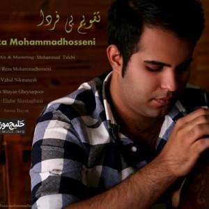 رضا محمد حسینی – تقویم بی فردا