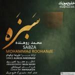 محمد روهنده – سبزه گل