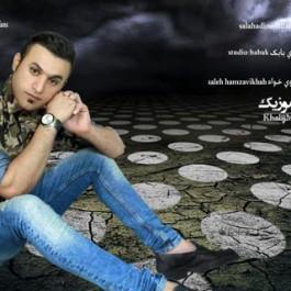 صلاح الدین ملاحی – از دست که بنالم