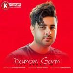 علی ابراهیمی آهنگ جدید و بسیار زیبا بنام دمم گرم