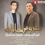 عبداله یونس و سهیل محمدیان آهنگ جدید بنام عروس جانانه