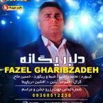 دلبر یگانه اجرای حفله فارسی جدید از فاضل غریب زاده