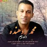 دلارام اثری جدید از محمد روهنده