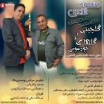 مسعود شاعری آهنگ جدید بنام گلچینی از کارهای خودمونی