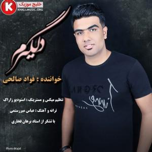 فواد صالحی آهنگ جدید و بسیار زیبا و شنیدنی به نام دلگیرم